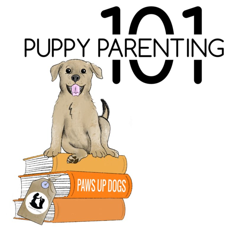 101 Puppy Parenting Tips